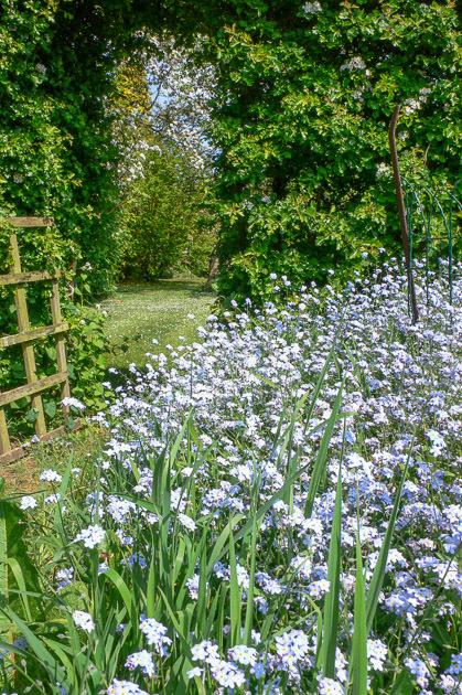 ガーデンの一番奥_b0234690_16054005.jpg