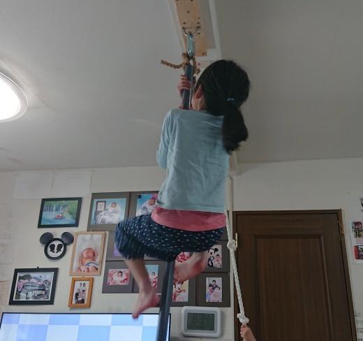 木登り設備を作った_a0163994_09365747.jpg