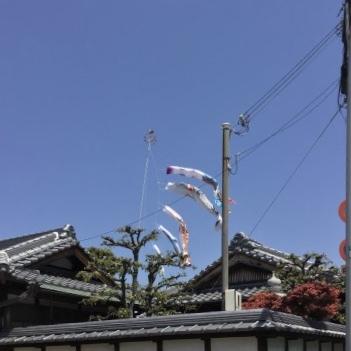 ☆屋根より高い☆_d0035397_12432185.jpeg
