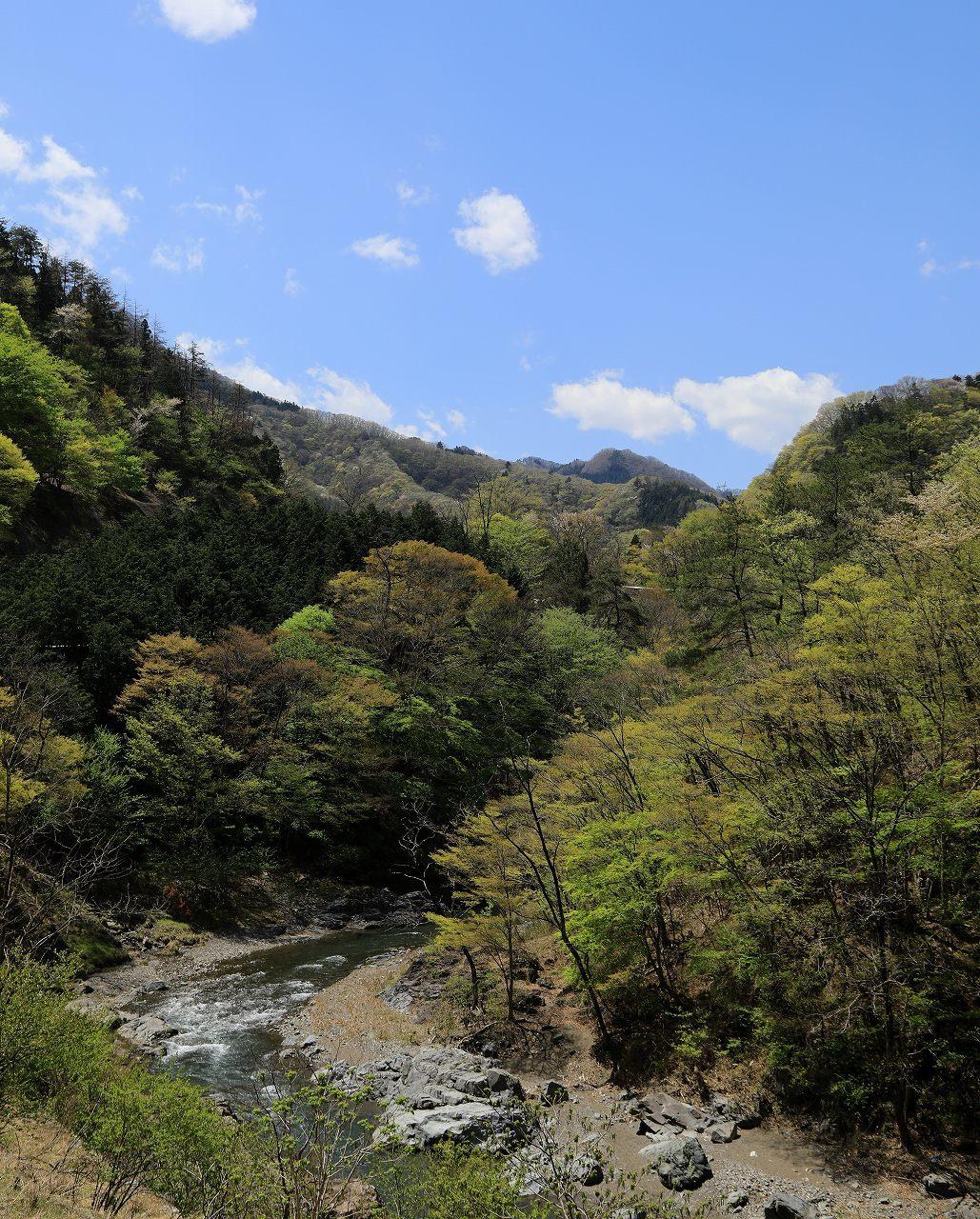 G県のお山にて_f0296999_17255371.jpg