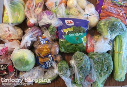 週1あらため3週間に1回の食材まとめ買いと献立(2-11)- 24 Days_b0253205_03071073.jpg