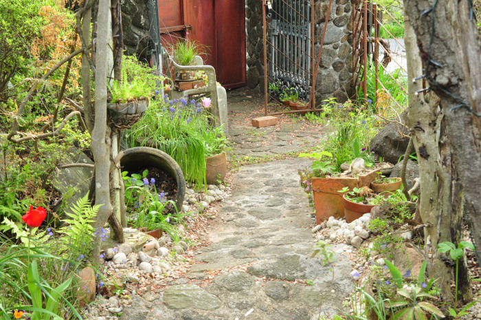 I\'m in my garden_f0188408_10171543.jpg