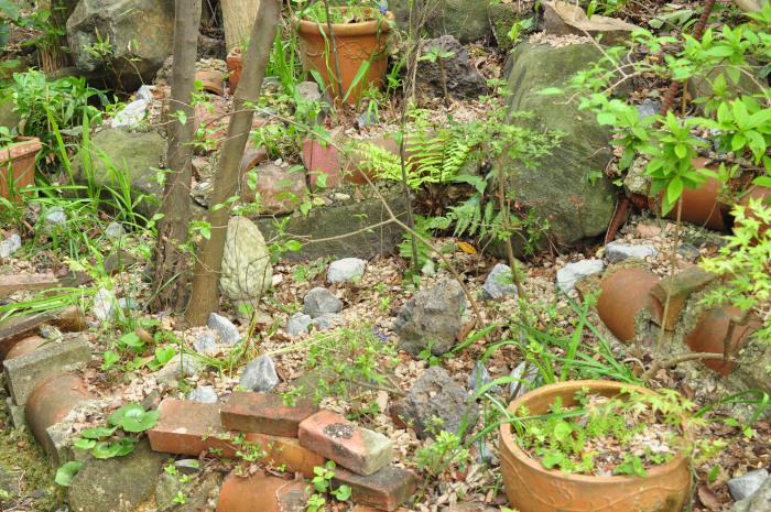 I\'m in my garden_f0188408_10185443.jpg