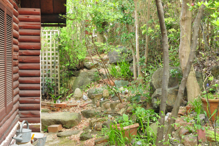 I\'m in my garden_f0188408_10190912.jpg