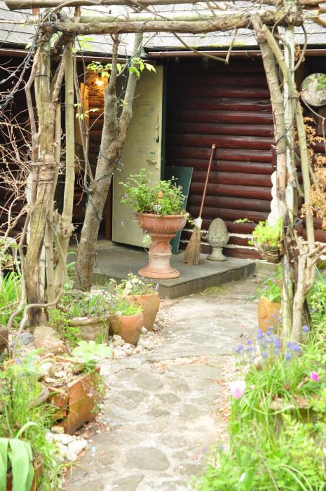 I\'m in my garden_f0188408_10232941.jpg