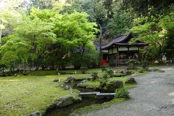 緑がいっぱい 上賀茂神社_e0048413_22083295.jpg