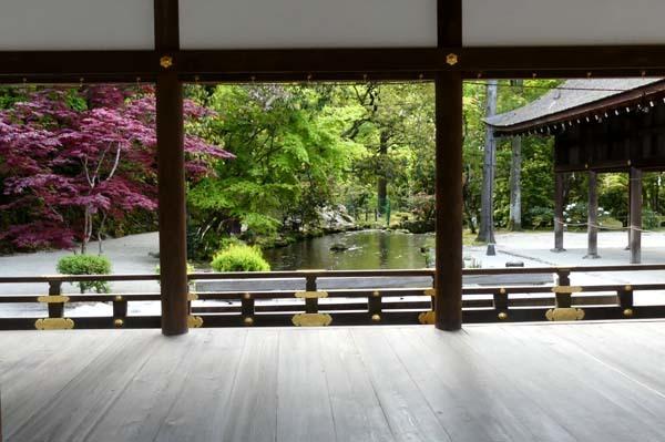 緑がいっぱい 上賀茂神社_e0048413_22084344.jpg