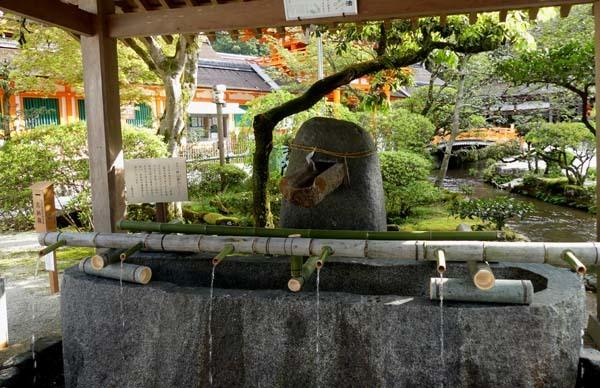緑がいっぱい 上賀茂神社_e0048413_22093274.jpg
