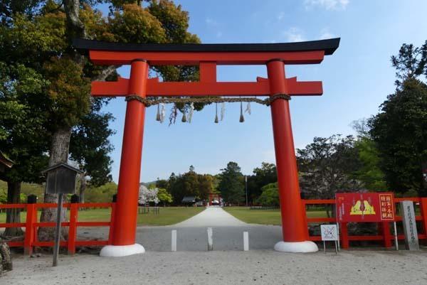 緑がいっぱい 上賀茂神社_e0048413_22094124.jpg