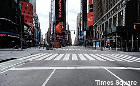 ニューヨーク・ロックダウン日記 4片, with シュタイナー_b0216318_13430137.jpg