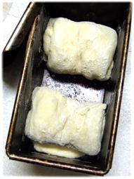 スーパーノヴァで角食。by オーヤマくん_d0221430_15584819.jpg