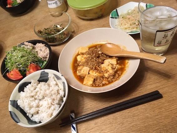 麻婆豆腐に挑戦_c0016913_11585686.jpg