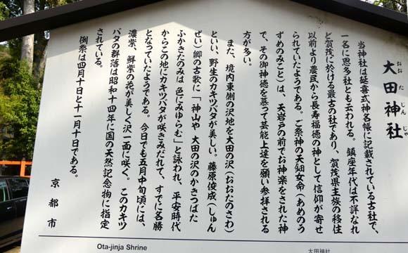 社家の道と太田神社の新緑_e0048413_21054508.jpg