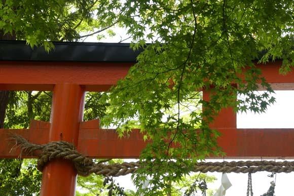 社家の道と太田神社の新緑_e0048413_21055320.jpg