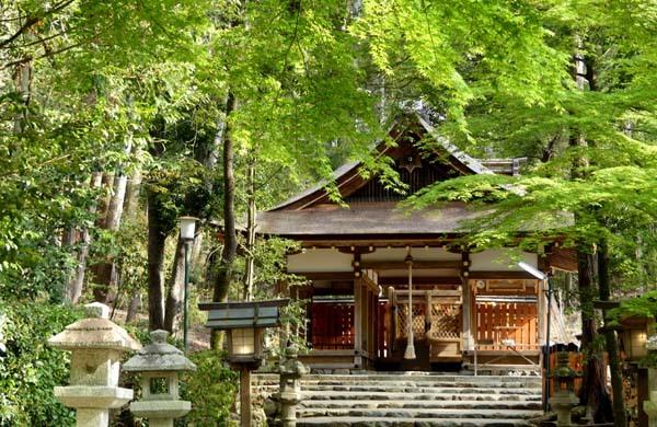 社家の道と太田神社の新緑_e0048413_21055808.jpg