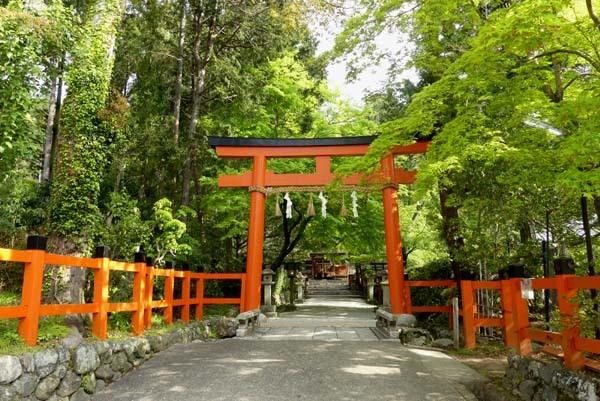 社家の道と太田神社の新緑_e0048413_21060726.jpg