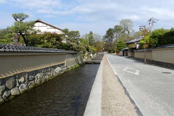社家の道と太田神社の新緑_e0048413_21061449.jpg