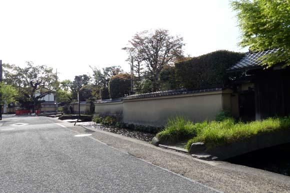 社家の道と太田神社の新緑_e0048413_21061770.jpg