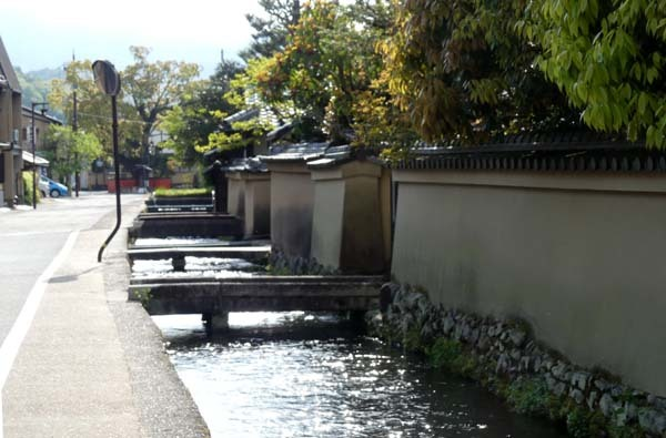 社家の道と太田神社の新緑_e0048413_21062076.jpg