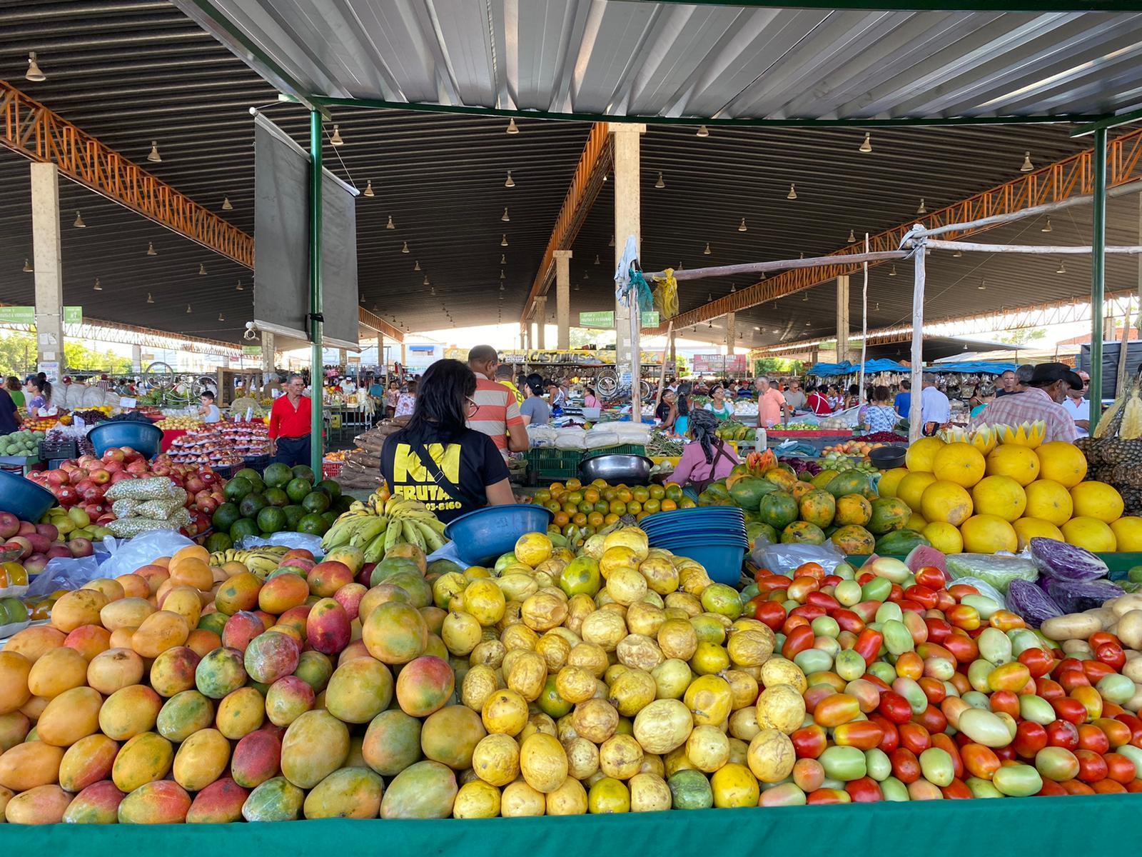 動画シリーズ◉002 #フルーツ 大国の大農場オーナー #QuemehKeitaBrasil ? 有名無名様々なブラジル人が語るケイタブラジルとは? #ブラジル #ポルトガル語 #ペトロリーナ 弁_b0032617_23092635.jpg