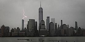 ニューヨーク・ロックダウン日記 4片, with シュタイナー_b0216318_05302311.jpg