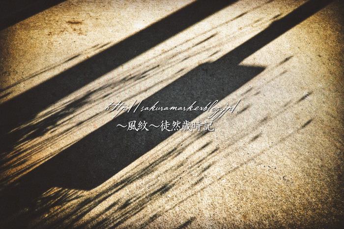 卯月の影。_f0235723_19513932.jpg