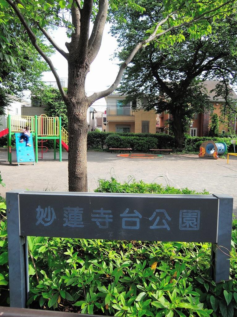 ある風景:Oguchi ▶ Myorenji@Yokohama #3_c0395834_16274487.jpg