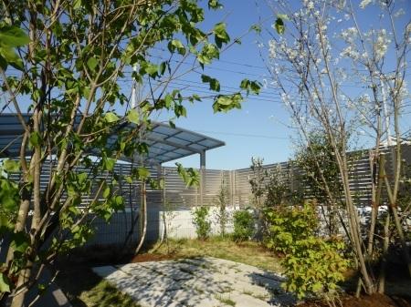 1年前のお庭。2019年の施工例から_e0356655_17245025.jpg