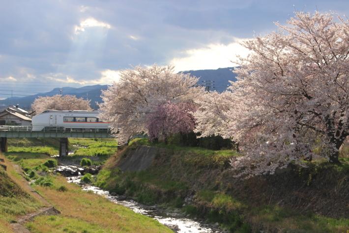 桜 PlayBack ~列車とのコラボ~_b0369971_10510568.jpg