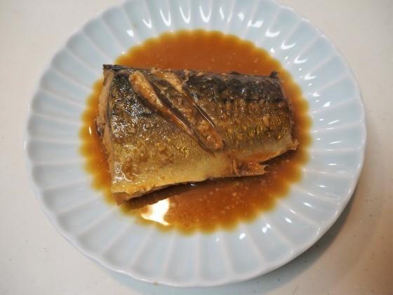 ちくわと鯖の味噌煮_a0258686_21172963.jpg