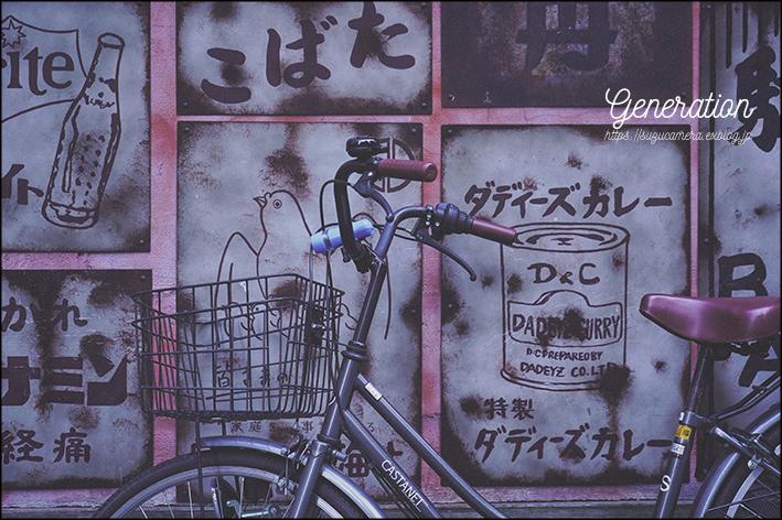 「昭和」という時代_f0100215_21425061.jpg