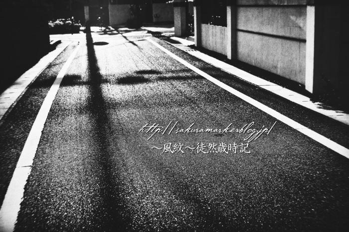 黄昏の街角。_f0235723_20163064.jpg