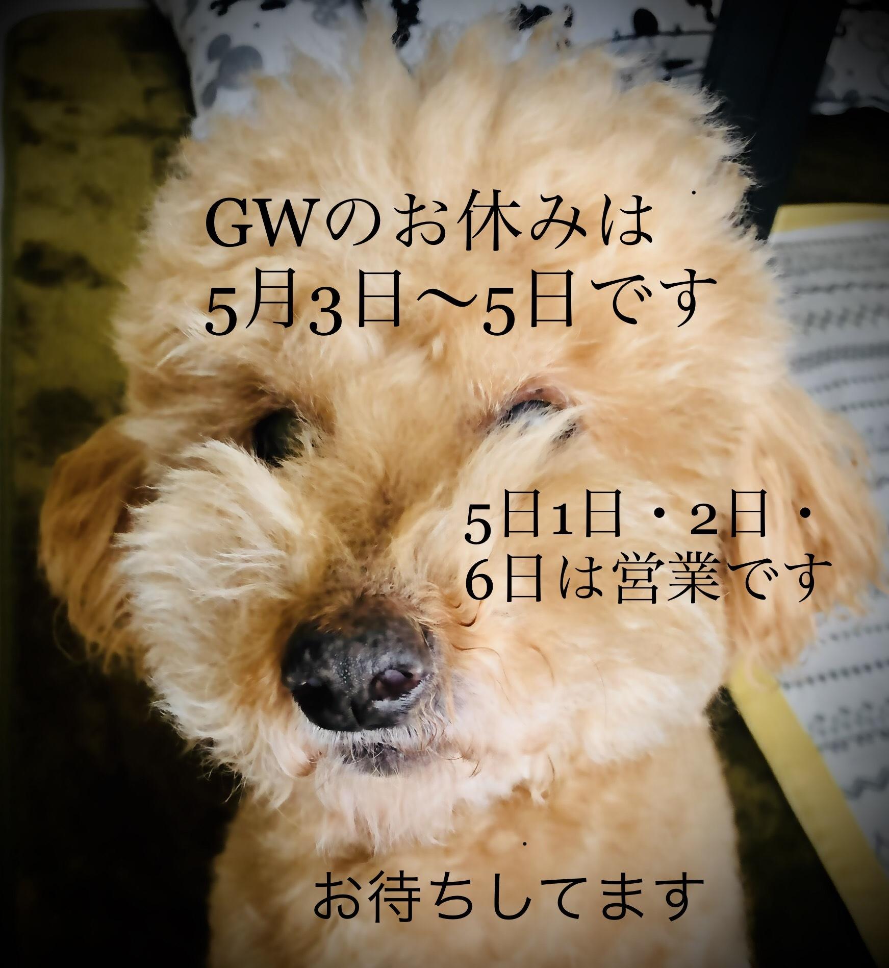 GWのお休み_e0187233_17443151.jpeg