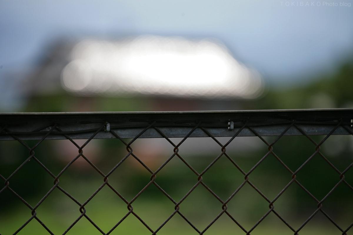 フェンスの向こう_d0100156_17115355.jpg