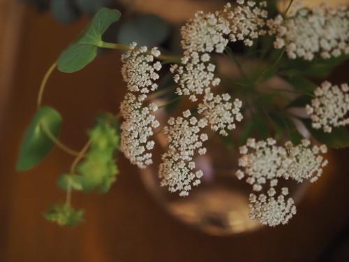 四月の甘い香りは未知への誘い_a0279858_17075315.jpg