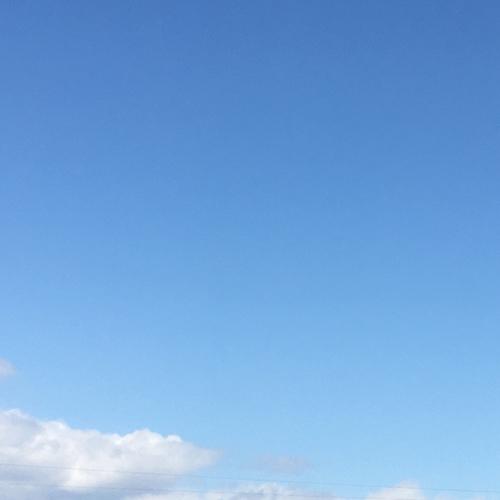 良いお天気の日にー木部のメンテナンス_f0064884_13561068.jpg