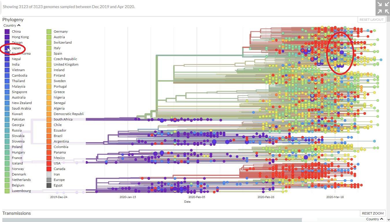 新型コロナウイルス_d0111991_1839162.jpg