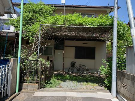 4月の庭 2020 - 2_f0239100_20551869.jpg