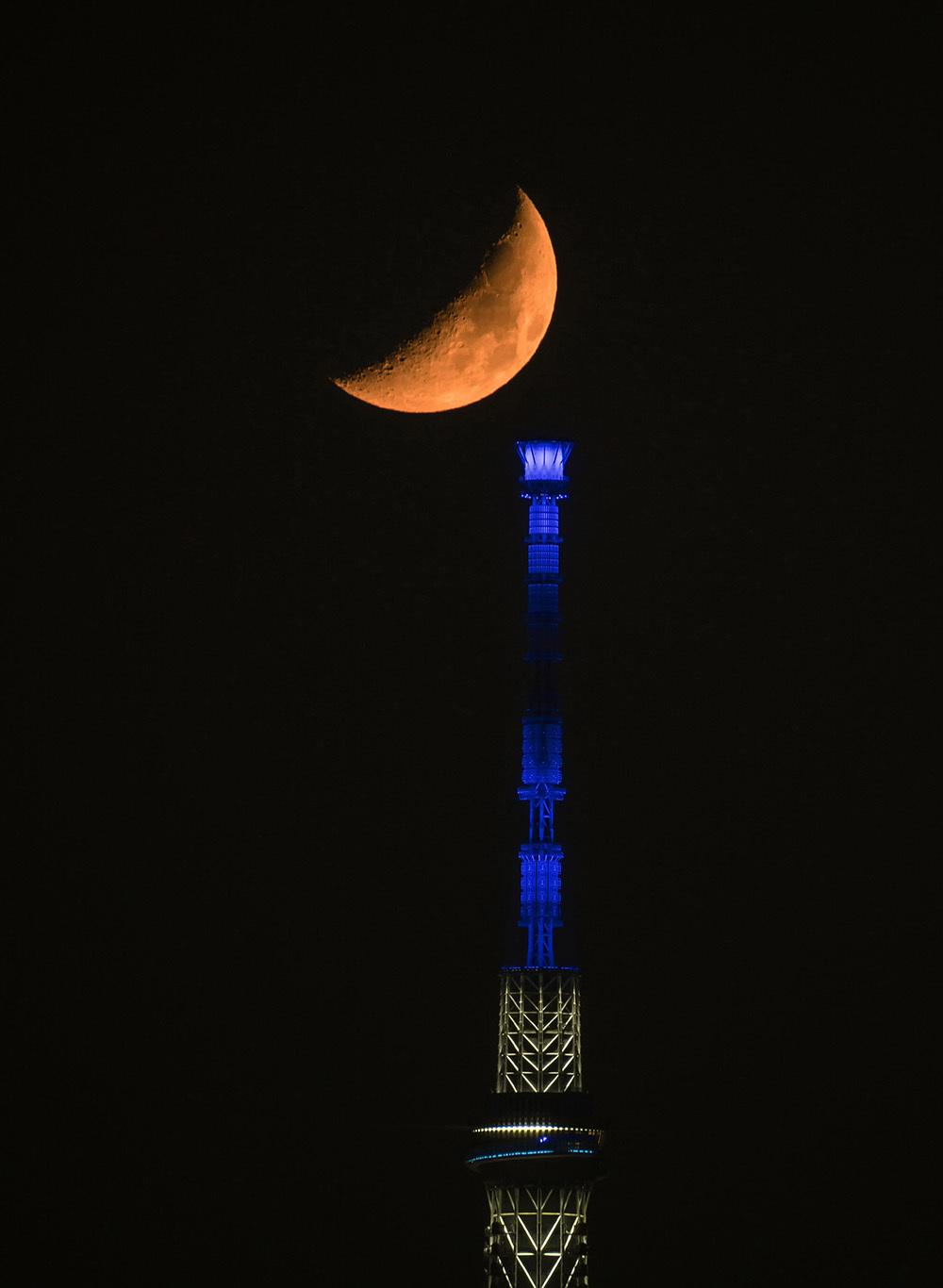 月齢6の月とスカイツリー_f0324026_01563483.jpg