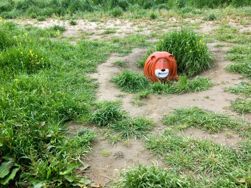 【号外】獅子太郎 半年点検_f0203027_11502787.jpg