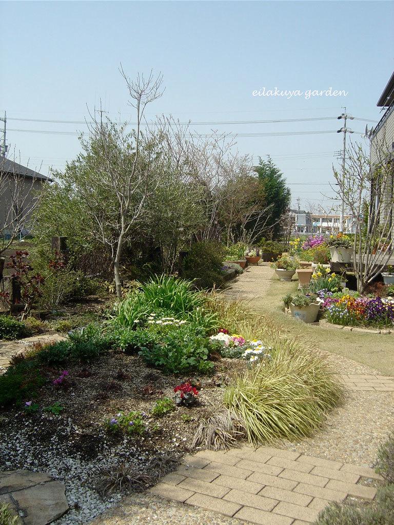 庭の変化と調和_b0133243_17174184.jpg