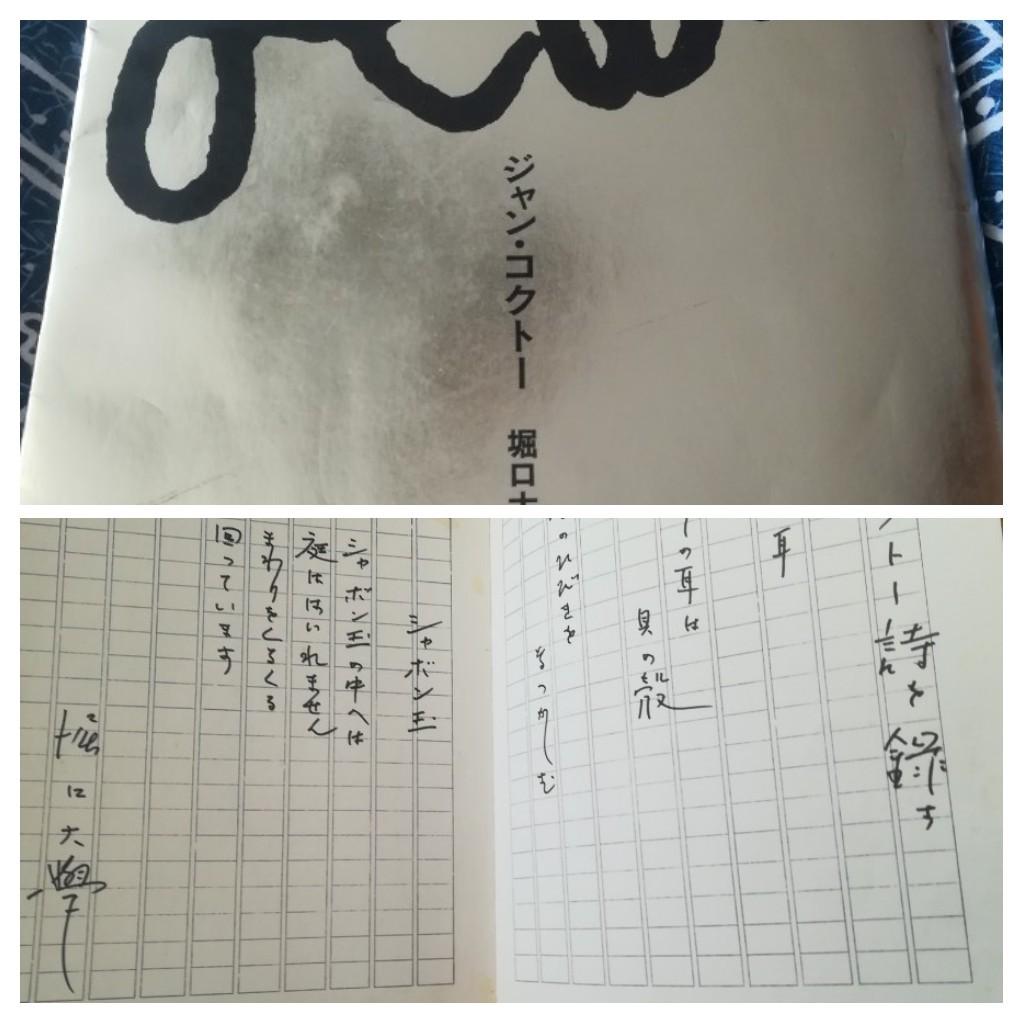 【7日間ブックカバーチャレンジ】_a0111166_10541182.jpg