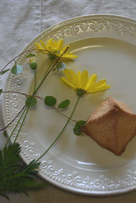 フランス菓子の時間ですよー_b0346275_15560996.jpg