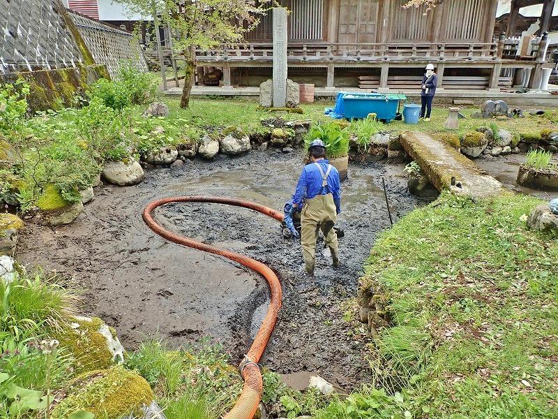29日には毘沙門堂の「琵琶湖池」で泥上げ作業がありました_c0336902_21403925.jpg