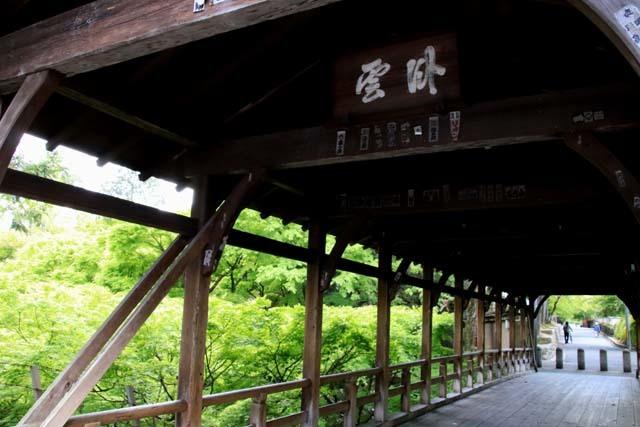 東福寺 青もみじ_e0048413_20150325.jpg
