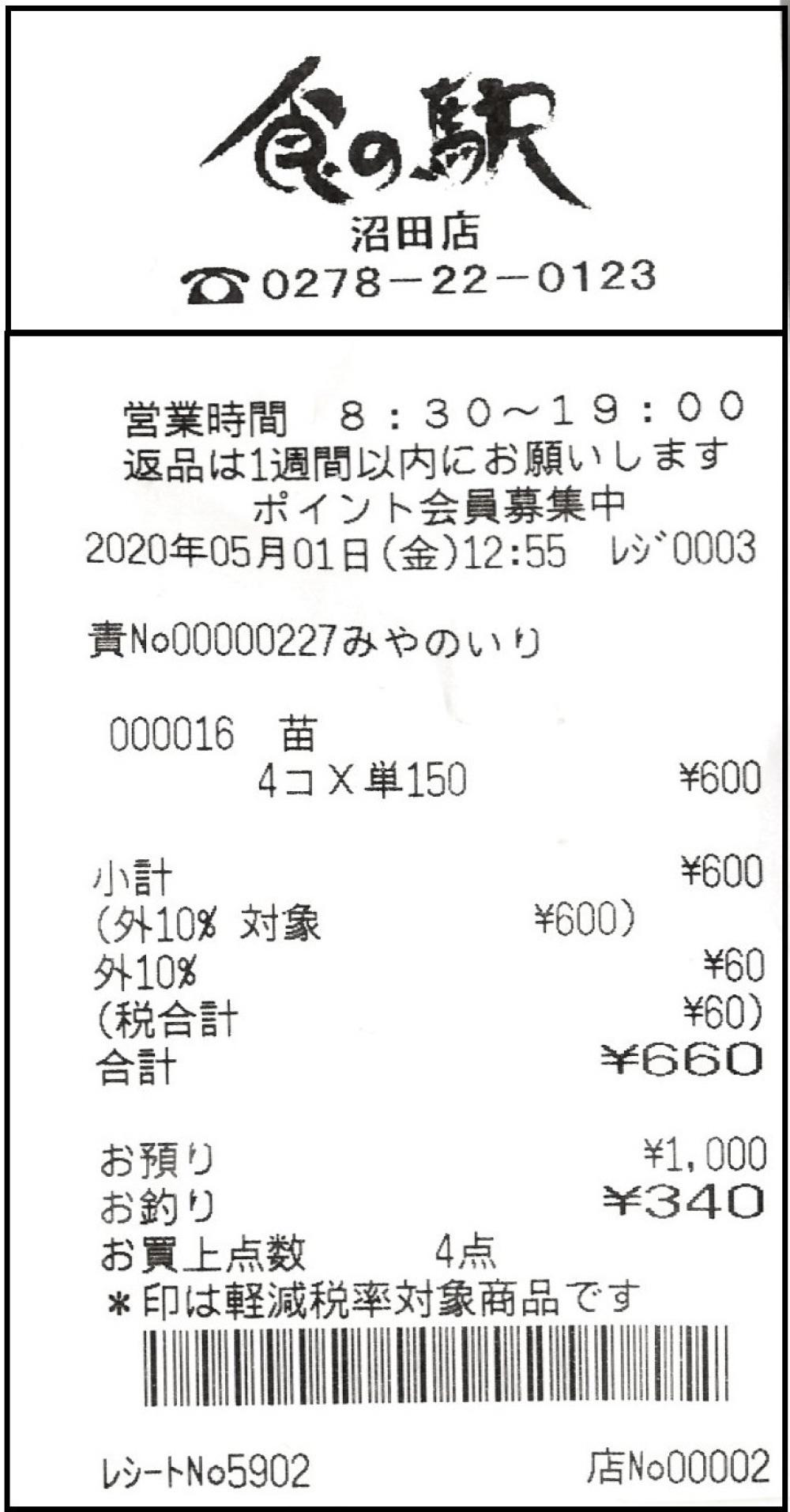 野菜の苗と種(かぐらがらし)_c0335218_19393793.jpg