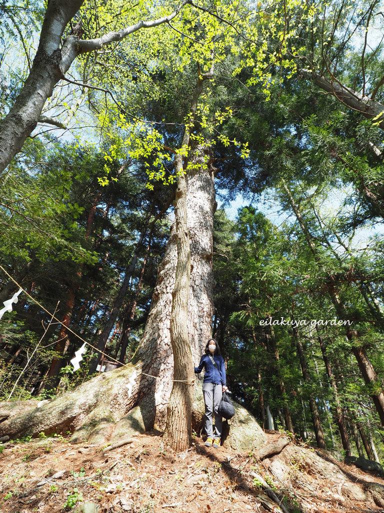 学びの場は自然の森_b0133243_23544162.jpg