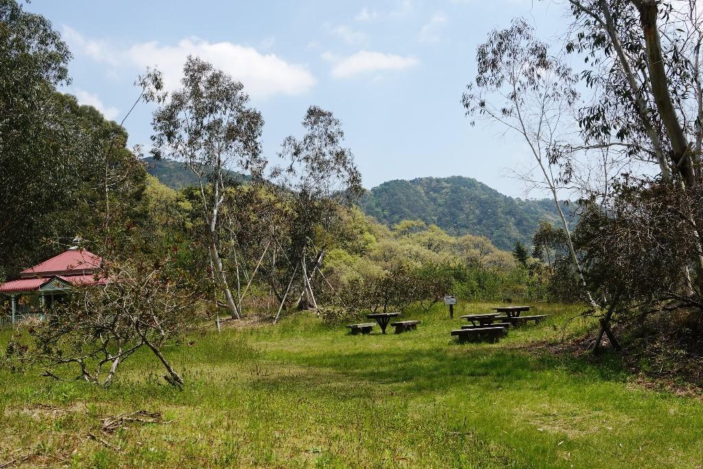 野鳥トレ 205 再度公園~森林植物園_b0227552_19075106.jpg