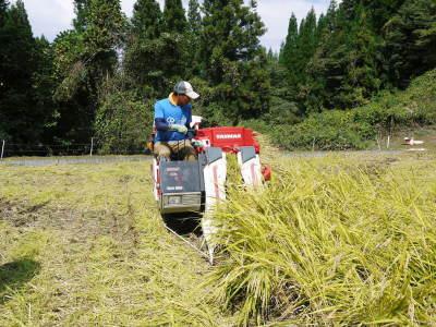 米作りの挑戦(2020年) 昨年より1週間早く苗床を作りました!(前編:米作りに取り組むわけとこの地の環境)_a0254656_17590340.jpg
