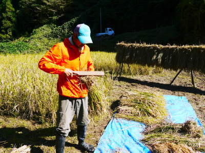 米作りの挑戦(2020年) 昨年より1週間早く苗床を作りました!(前編:米作りに取り組むわけとこの地の環境)_a0254656_18060097.jpg